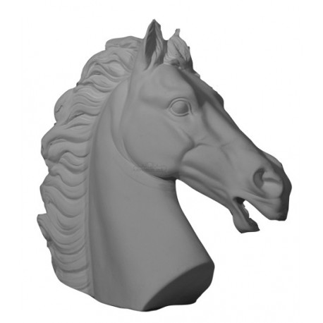 Tète de cheval